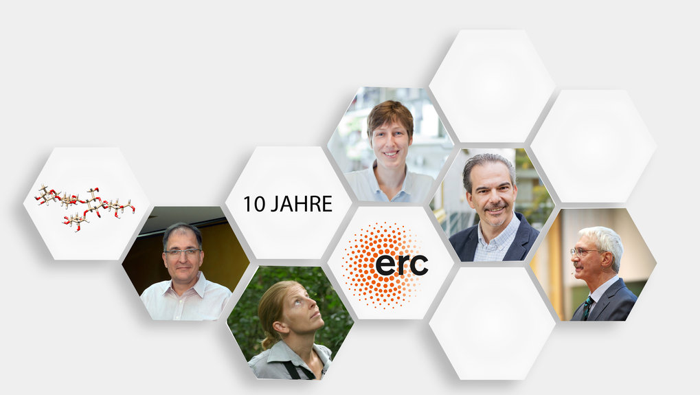 10 years European Research Council