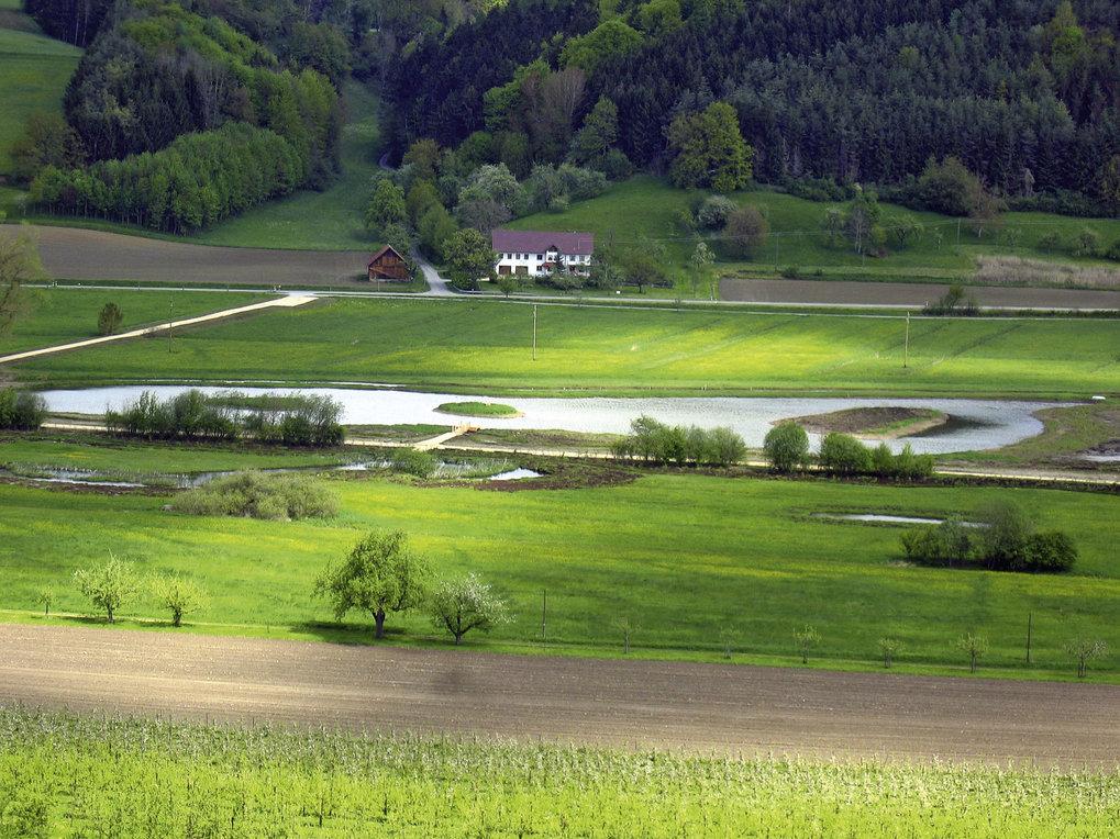 Der Heinz-Sielmann-Weiher in der Gemarkung Billafingen war einer der ersten neuen Lebensräume des Biotopverbundes Bodensee. Rund um den 1,3 Hektar gro