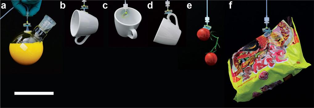 Der Vielzweckgreifer im Einsatz: Er hält spielend verschiedene Objekte wie einen runden Erlmeyer-Kolben (a), der mit 200 ml Flüssigkeit gefüllt ist (T