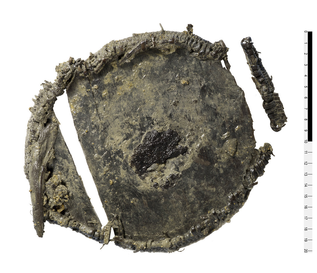 Unique wheat discovery in Bronze Age lunch box