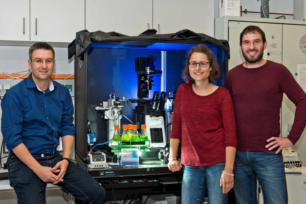 Gruppenbild mit Grünalgen: Oliver Bäumchen, Christine Linne und Christian Kreis (von links) haben die Haftung der Algen auf Oberflächen untersucht.
