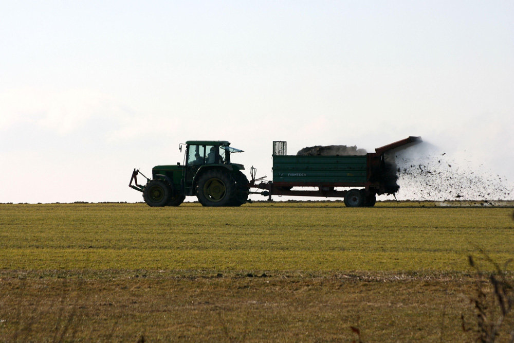 Eine wichtige Quelle für Feinstaub: Landwirtschaftliche Ammoniakemissionen aus Düngung und Viehzucht.