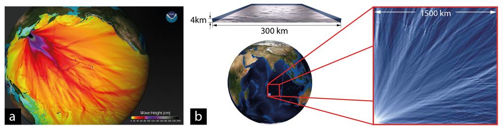 Abb 1 (a): Die Rekonstruktion des Tsunami am 11.3.2011 im Pazifischen Ozean durch das NOAA Center for Tsunami Research zeigt deutlich ausgeprägte Höhe