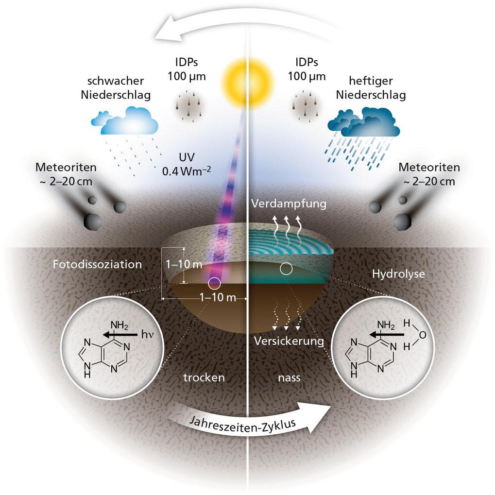 Abb. 2: Schematische Darstellung der verschiedenen Einflüsse auf chemische Verbindungen in kleinen warmen Teichen im Wasser und während der Trockenpha