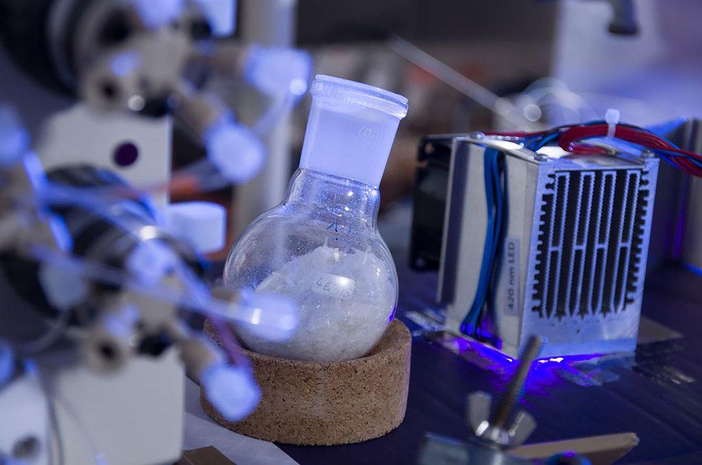 Artemisinin (weiße Kristalle) lässt sich mit dem neu entwickelten Verfahren jetzt kostengünstiger, effizienter und umweltfreundlicher herstellen.