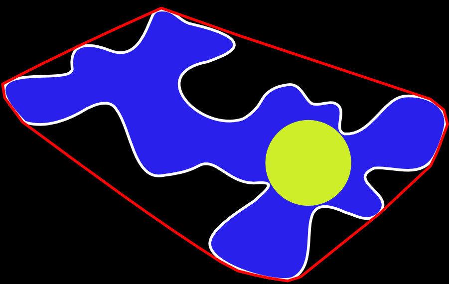 Modell einer Pflanzenzelle: Die Wissenschaftler haben herausgefunden, dass je kleiner der Kreis (gelb) ist, der in einer Zelle Platz findet, desto ger