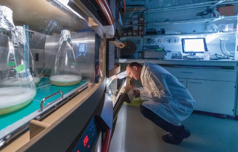 "<p class=""mpgbu"">Oliver Weichenrieder checks incubation cabinets for genetically altered bacteria. The microbes produce transposon proteins, which the"