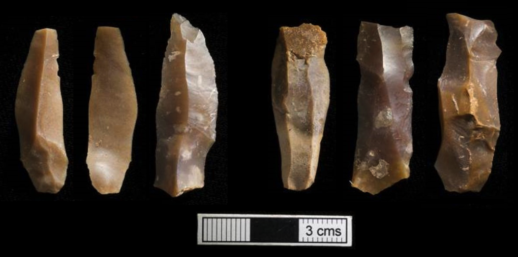 Scientists analyse oldest human DNA from Africa