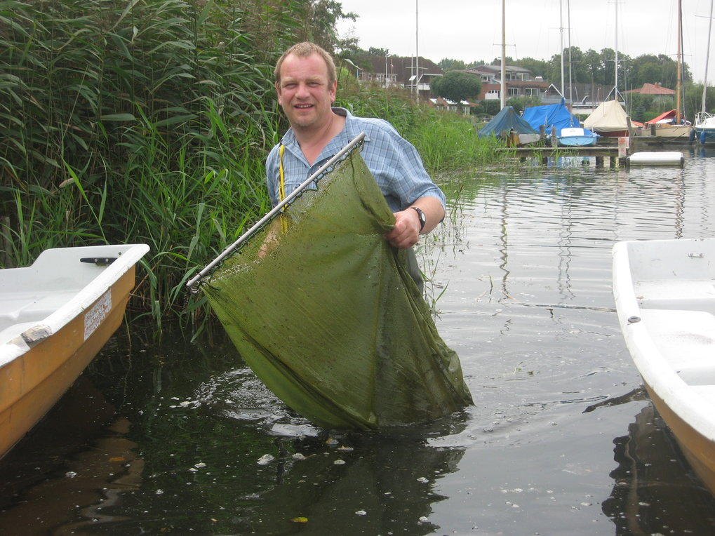 <em>Schistocephalus solidus</em> ist nicht der einzige Plagegeist im Großen Plöner See. Fast jeder Wasserbewohner besitzt eigen Parasiten. Martin Kalb