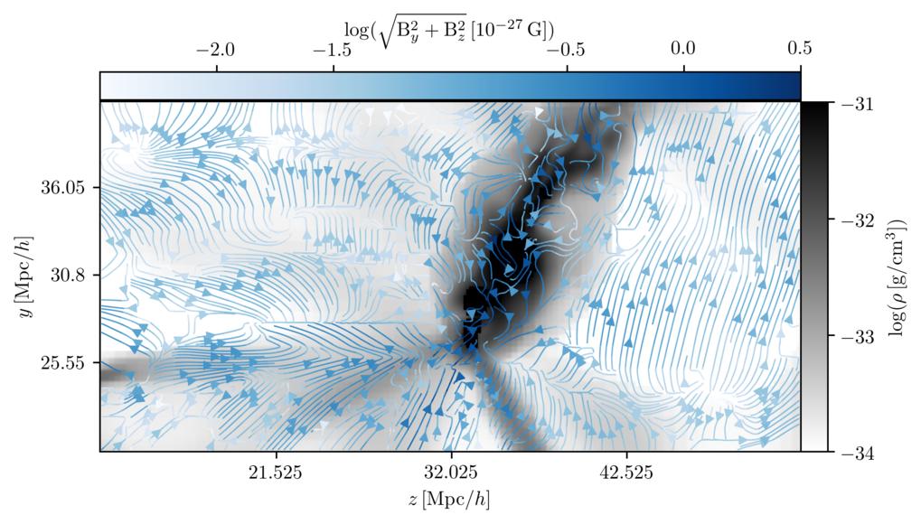 <p>Kosmische Felder: Ein Schnitt durch den Perseus-Pisces-Galaxienhaufen im heutigen Universum mit der Materieverteilung in Grau und den Harrison-Magn