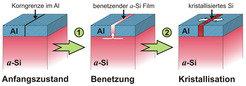 <b>Abb. 3:</b> Ordnung im Spalt: Eine Aluminiumdeckschicht senkt die Kristallisationstemperatur von amorphem Silizium (a-Si). Zuerst benetzt das a-Si