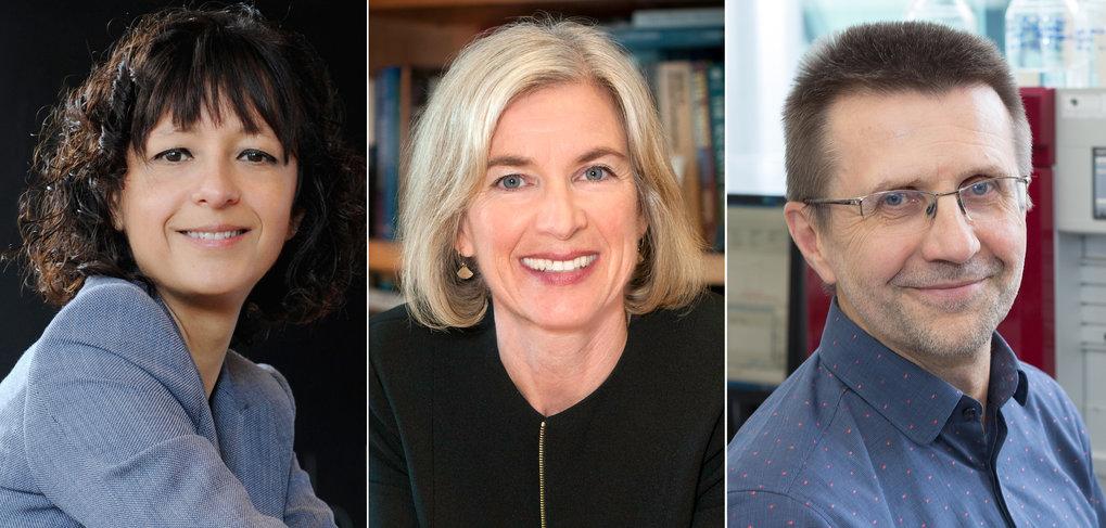 Von links nach rechts:<span>Emmanuelle Charpentier, Jennifer A. Doudna und Virginijus Šikšnys</span>