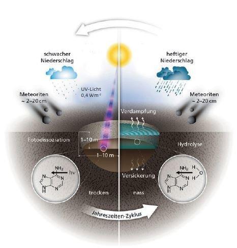 Die Grafik zeigt die vielen Einflüsse, die in solchen Kleinstgewässern auf chemische Verbindungen einwirkten.