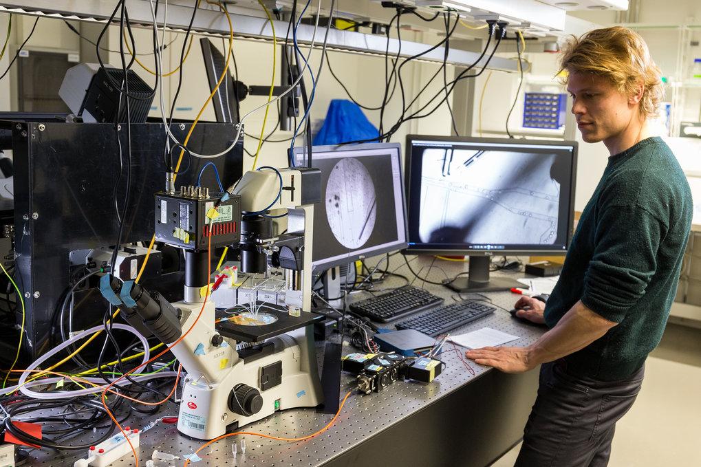 Ein Mikroskop mit einer Bildanalyse-Software erkennt unterschiedliche Zelltypen. Damit kann Kai Libicher bis zu 20000 künstliche Modellzellen pro Seku
