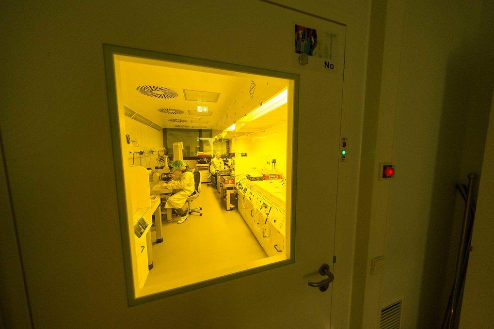 Abgeschottet: In nur wenige tausendstel Millimeter großen Kammern und Kanälchen studieren Petra Schwille und ihr Team am Max-Planck-Institut für Bioch