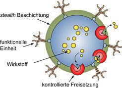 <strong>Abb. 1:</strong> Schematische Darstellung eines Wirkstoffträgerpartikels. Gezeigt sind die <i>stealth</i> Beschichtung, die funktionelle Einhe