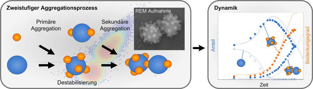 <strong>Abb. 2:</strong> Zweistufiger Aggregationsprozess in binären physikalischen Partikelsystemen durch elektrostatische Destabilisation. Durchflus