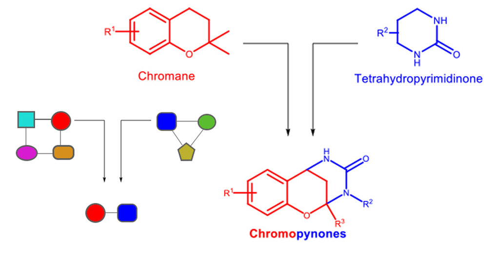 Design von Pseudonaturstoffen: Unterschiedliche Naturstoffe werden zunächst in kleine Fragmente zerlegt und anschließend neu kombiniert. Im vorliegend