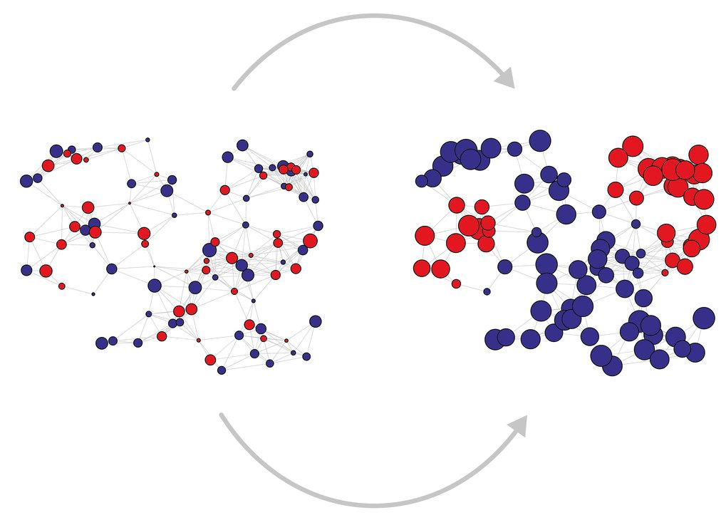 Computer-Simulationen verdeutlichen den Prozess der Entstehung und Entwicklung von Polarisierung in Abhängigkeit vom zeitlichen Verlauf.