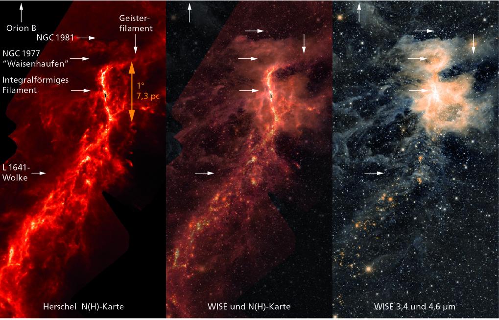 Im All kommen ständig Sonnen zur Welt. Häufig entstehen auch gleich ganze Sternhaufen auf einmal – und zwar in vergleichsweise kurzer Zeit. Um Letzter