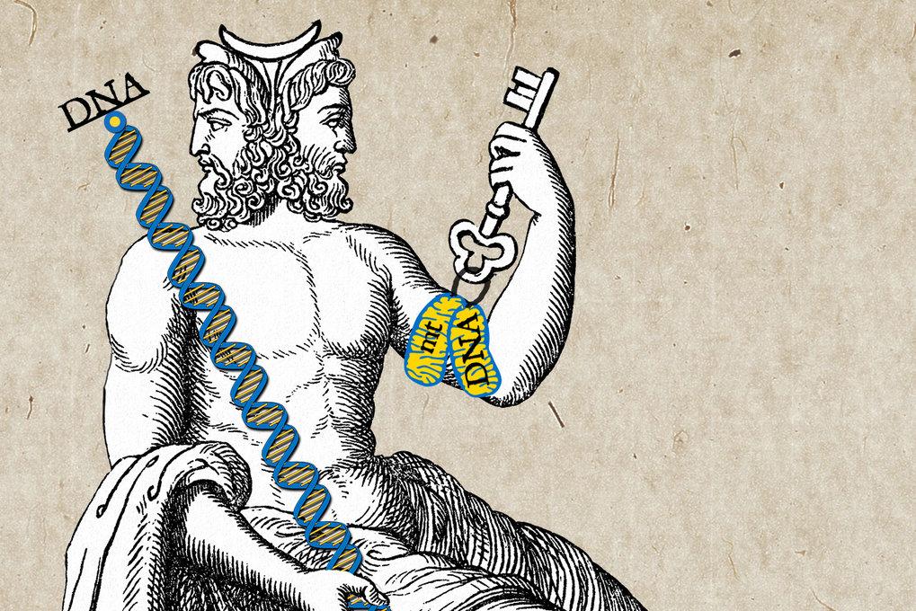 Wenn Epigenetik auf Stoffwechsel trifft