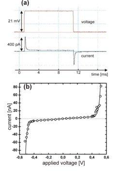 <strong>Abb. 3: </strong>Elektrische Eigenschaften einer Lipiddoppelschicht (Membran),  die sich zwischen zwei benachbarten Wassertropfen aus dem die