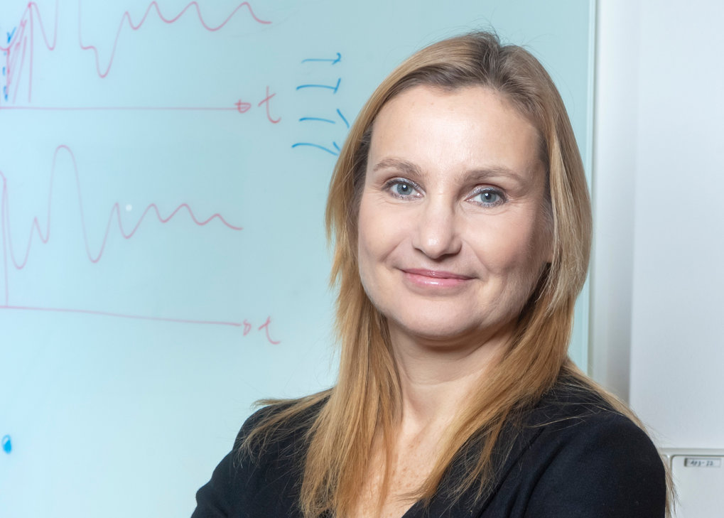 Prof. Elena Levashina; Max-Planck-Institut für Infektionsbiologie, BerlinGenetisch veränderte Insekten könnten ein wichtiger Bestandteil im Kampf gege