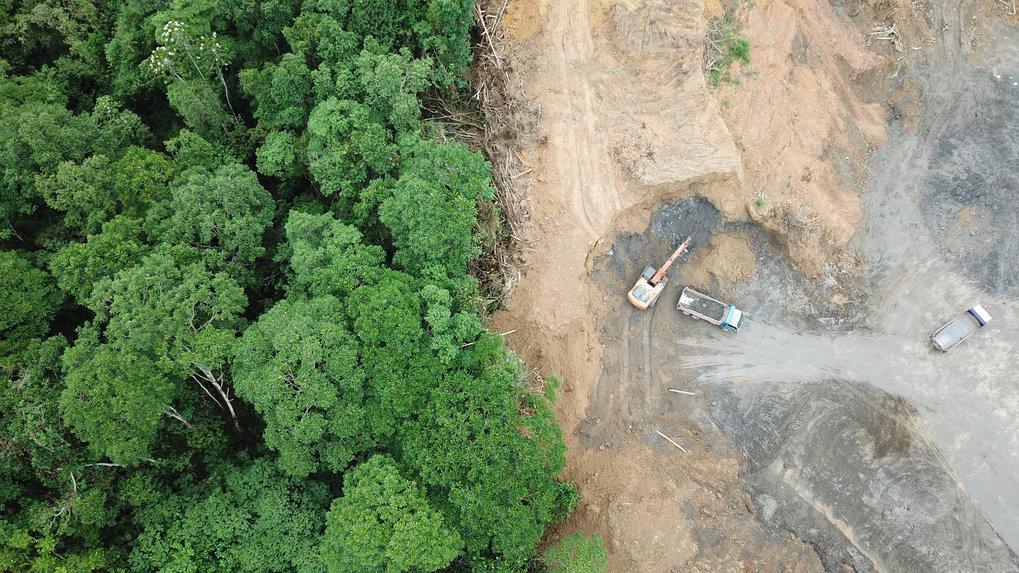 Der Mensch verändert seine Umwelt immer stärker, wie hier den Regenwald auf Borneo, der Plantagen für Ölpalmen weichen muss. Der Earth Day will jedes