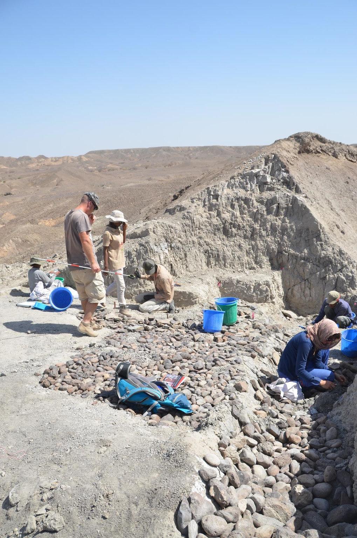 Archäologen vom Max-Planck-Institut für evolutionäre Anthropologie und der Ethiopian Authority for Research and the Conservation of Cultural Heritage