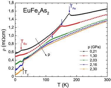 Vom Magnetismus zur Supraleitung: Aufzeichnung der Temperaturabhängigkeit des elektrischen Widerstandes von EuFe2As2 bei verschiedenen Drücken. Die bl