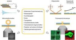 """<b>Abb.4:</b> Mithilfe eines """"Werkzeugkastens"""" grenzflächensensitiver und biophysikalischer Methoden lassen sich viele Eigenschaften der Modellsystem"""