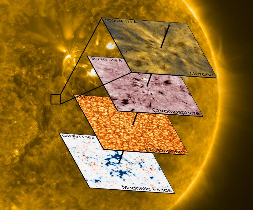 Spikulen treten vor allem dort auf, wo sich zu dem Netzwerk aus starken Magnetfeldern positiver Polarität ein schwächeres Feld negativer Polarität ges