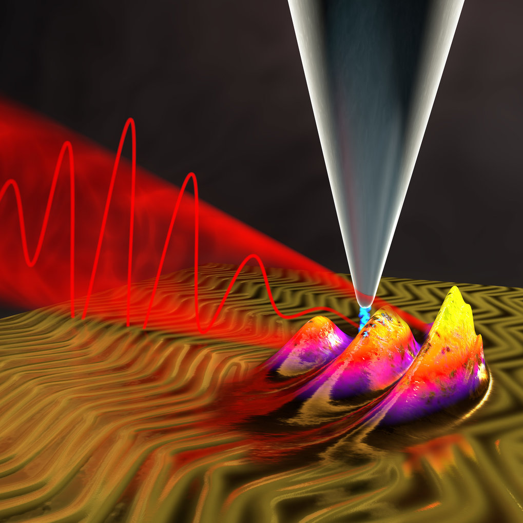 An ultrafast microscope for the quantum world