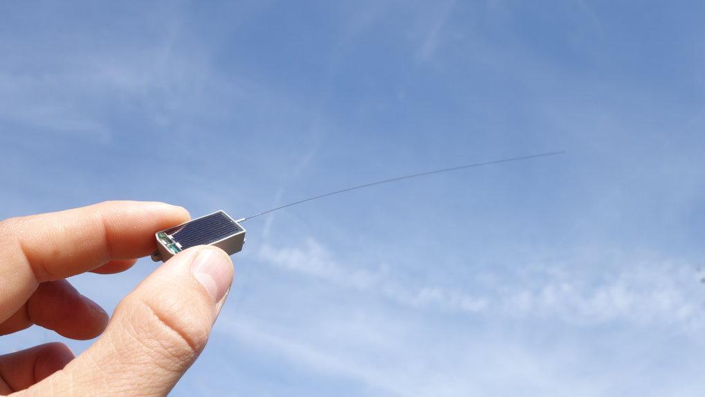 Die eigens für Icarus entwickelten Sender wiegen nur fünf Gramm. Sie messen die Position und verschiedene Körperdaten des Tieres und leiten die ihre M