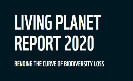 Living Planet Report des WWF