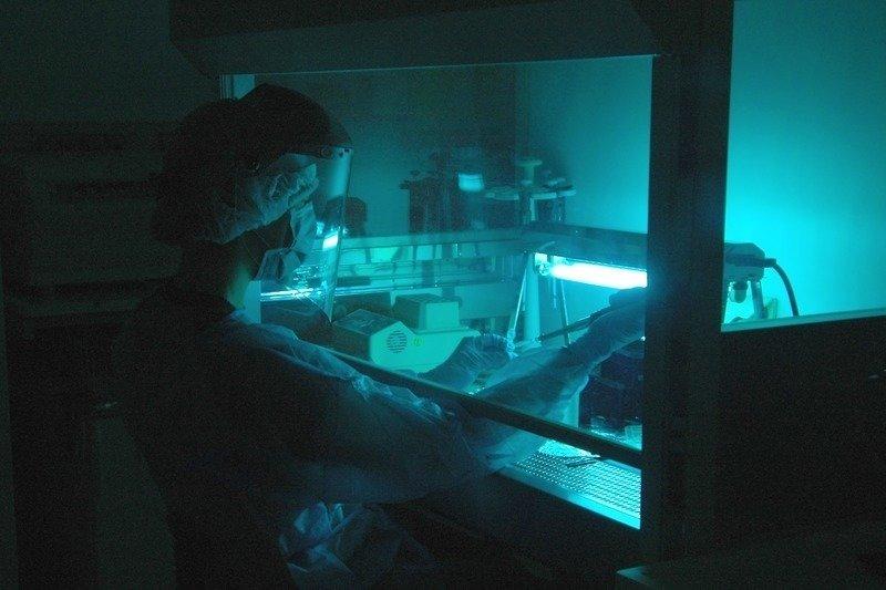 Forscherin im Reinraum des Max-Planck-Instituts für evolutionäre Anthropologie.