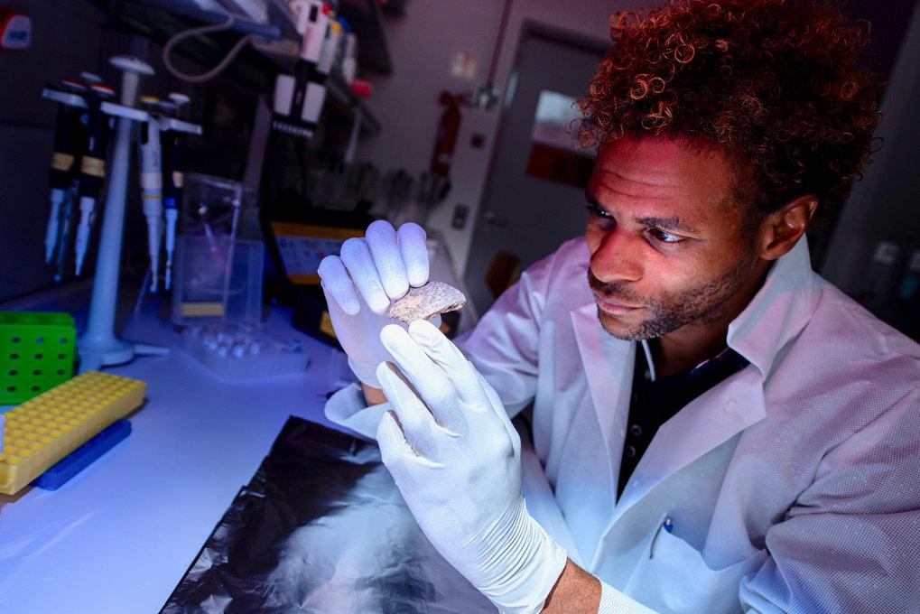 Diyendo Massilani durchsuchte die Genome der Salkhit- und Tianyuan-Individuen auf DNA-Spuren von ausgestorbenen Homininen und wurde fündig.