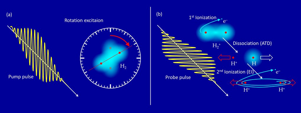 "Rotation of a molecule as an ""internal clock"""