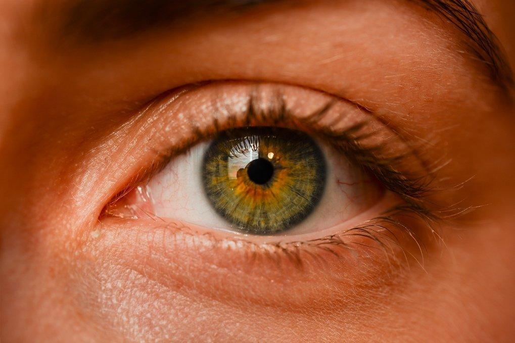 Forschende können die Pupille eines Probanden extrem präzise vermessen.