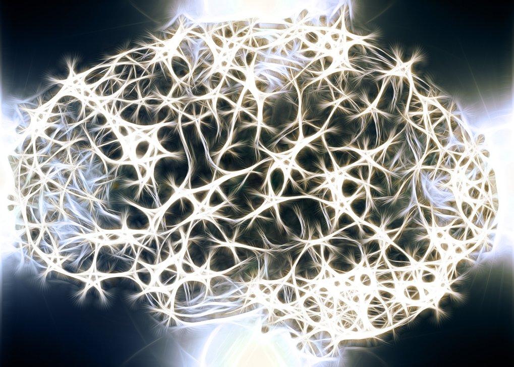 Das Gehirn besteht aus unzähligen Nervenzell-Netzwerken.