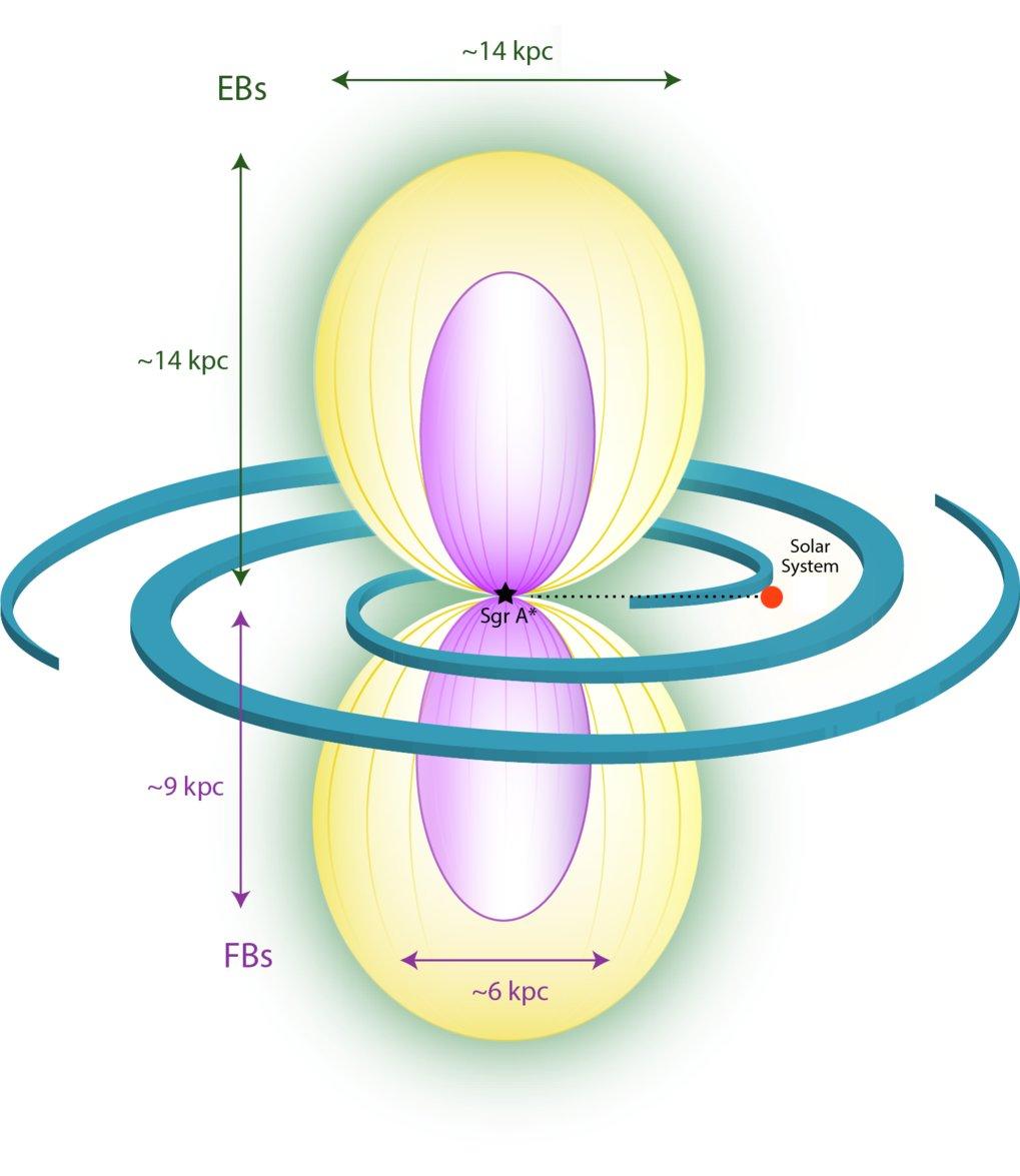 Umgebung der Milchstraße: Diese schematische Darstellung zeigt die eROSITA-(gelb) und die Fermi-Blasen (violett). Die galaktische Scheibe ist mit ihre