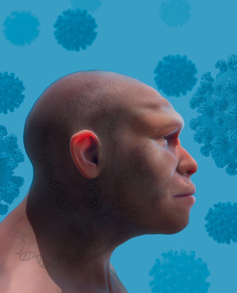Neandertaler-Genvarianten - Max-Planck-Gesellschaft