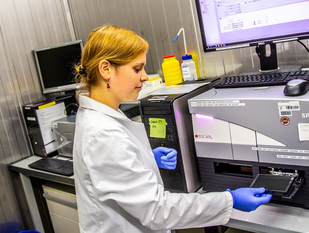 Elisabeth Hennes sucht mit dem neuartigen zellbasierten Testverfahren nach potentiellen IDO1 Hemmstoffen.