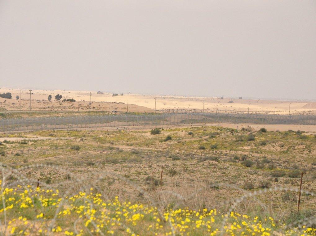 Grenze zwischen Israel (Vordergrund) und Ägypten. Während auf der israelischen Seite der Negev-Wüste im Frühling Blumen blühen, ist der ägyptische Tei