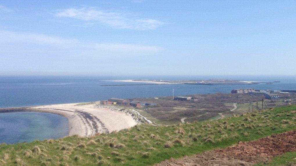 Sand gibt es genug auf der Nordseeinsel Helgoland. Und dennoch ist auf dem sandbedeckten Meeresboden der Wohnraum für neue Bakterienarten sehr begrenz