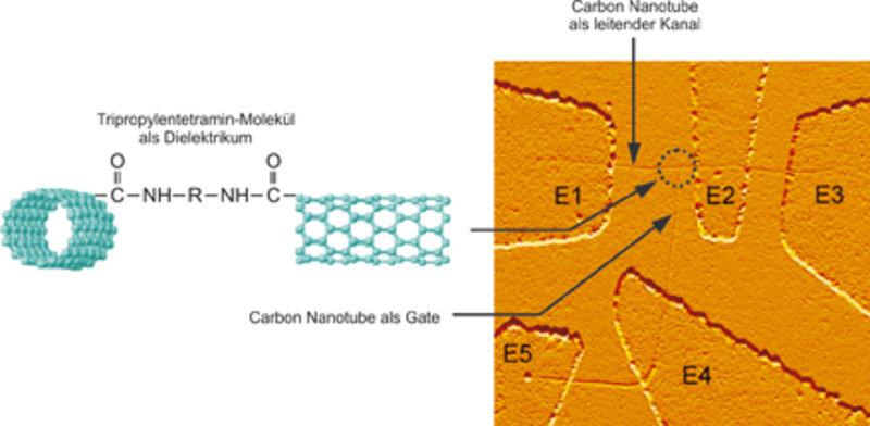 """All-Carbon-Transistor"" im Rasterkraftmikroskop."