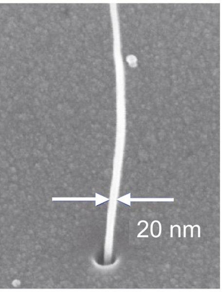 Siliziumchip mit einem Ätzloch, aus dem eine mehrwandige Nanoröhre herauswächst.