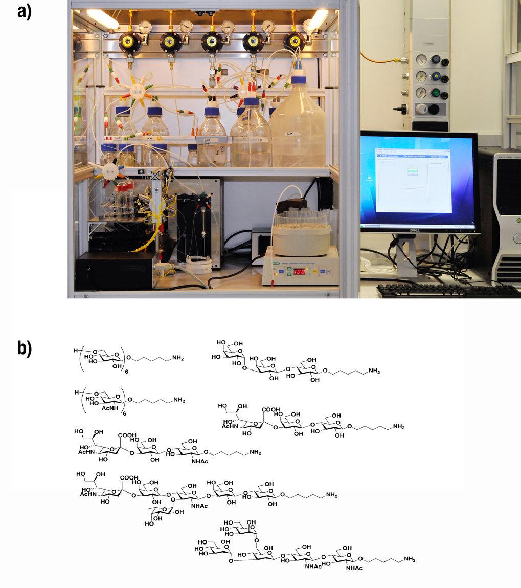 Automatische Synthese von komplexen Kohlenhydraten: a) Automatisierter Synthesizer; b) Auswahl von automatisch synthetisierten Kohlenhydraten.
