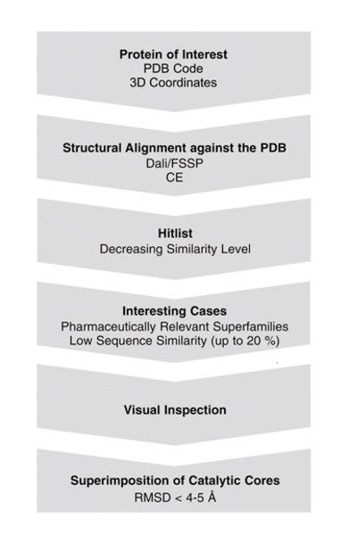 """Bioinformatische Vorgehensweise zur Identifizierung von """"protein structure similarity clusters"""" ."""
