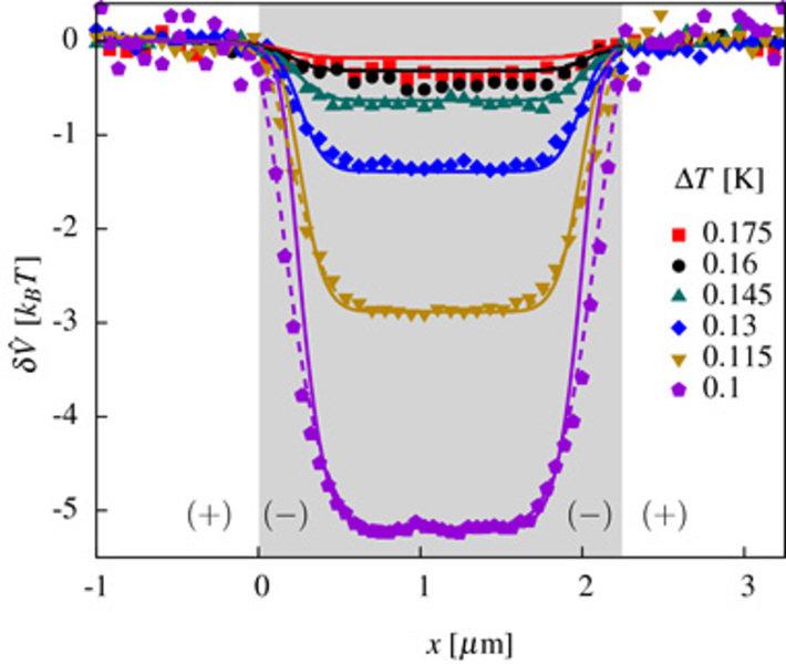 Laterale, temperaturabhängige kritische Casimirpotentiale auf einem linienförmig strukturierten Substrat (Symbole: experimentelle Daten, Linien: theor